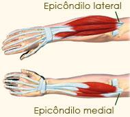 Epicôndilo medial e lateral