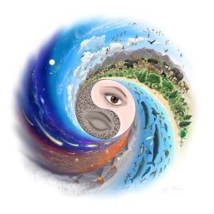 Yin/Yang e os 5 Elementos da Natureza